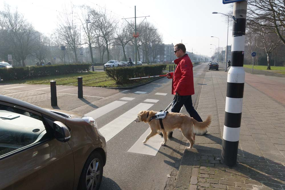 man met hond wil oversteken