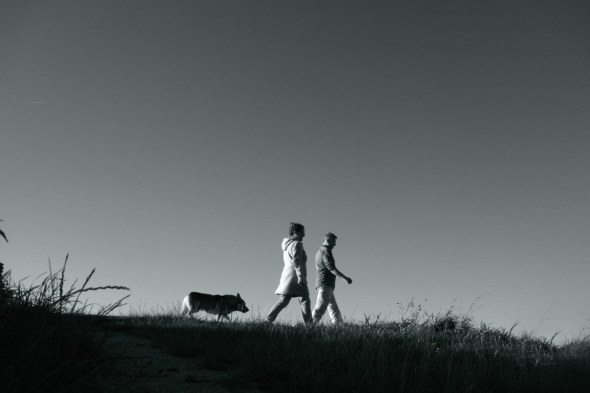 wandelgroep